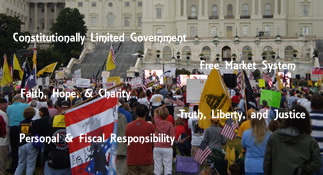 Tea Party Issues & Platforms
