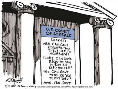 Government Mandates Gone Wild