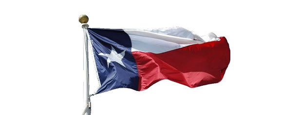 Texas Pension Fund Reform