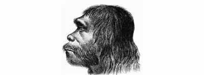 Republican Congressmen Are Not Neanderthals