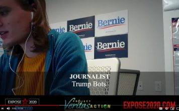Project Veritas Bernie Sanders Campaign Staffers Promoting Extreme Action